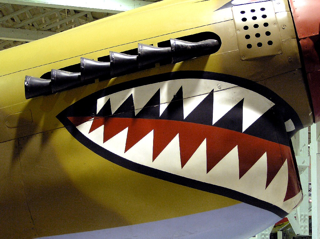 The Curtiss P-40 Fighter - Kittyhawk, Warhawk and Tomahawk -a photograph not a model aircraft kit