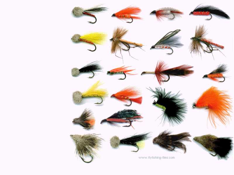 fly fishing flies computer desktop background wallpaper, Fly Fishing Bait