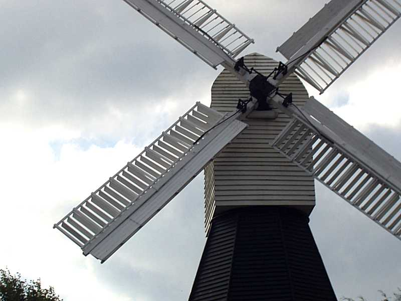 Boy Scouts, Beavers, Scout Leaders, Venture Scouts, Explorer Scouts, Girl