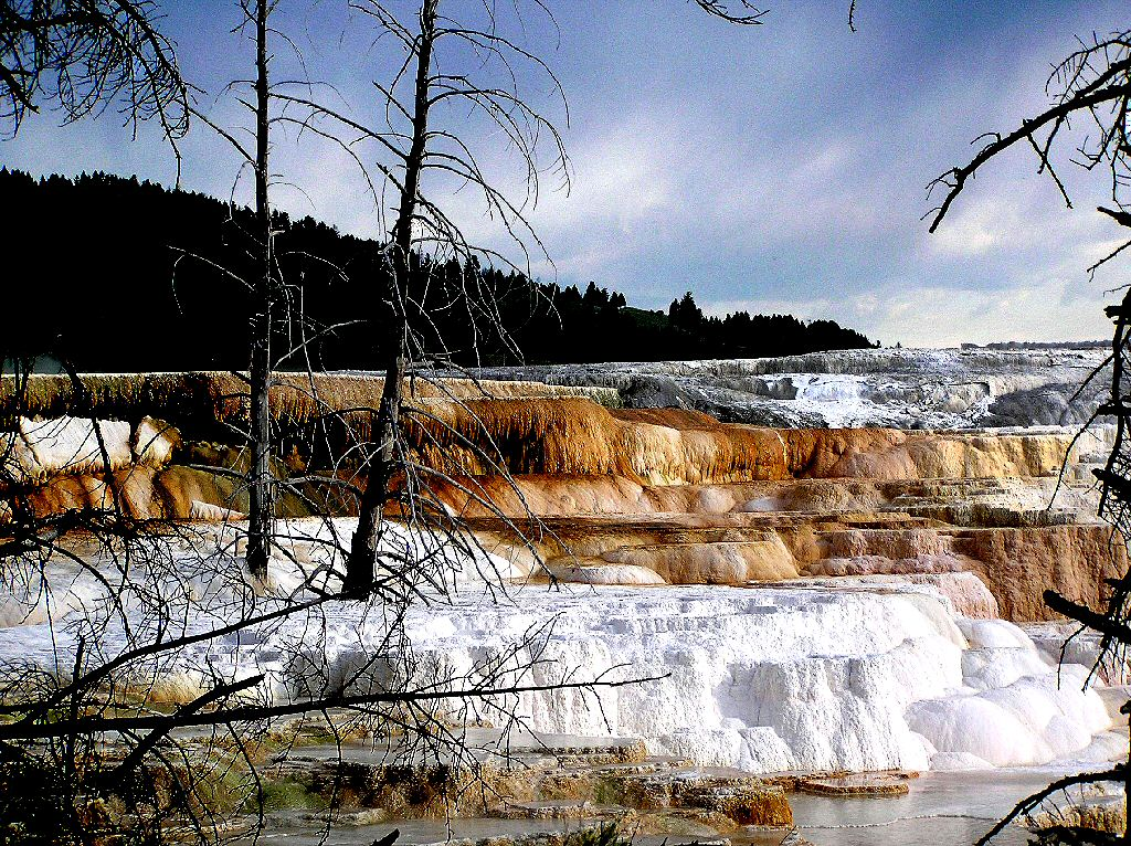 Yellowstone National Park NPS Idaho Montana Wyoming USA